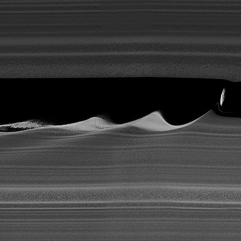 Daphnis_makes_waves_-_4x_vertical_stretch